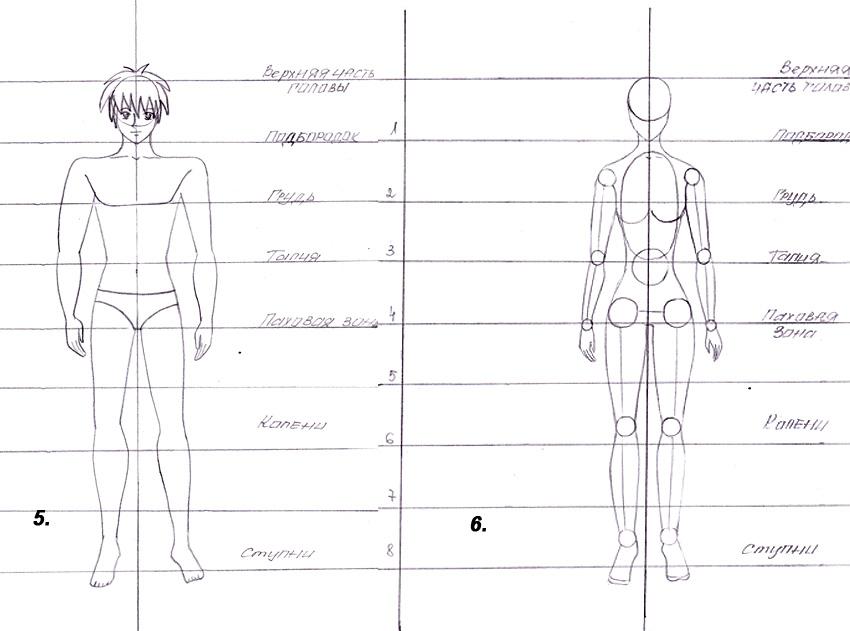 аниме: рисуем человека