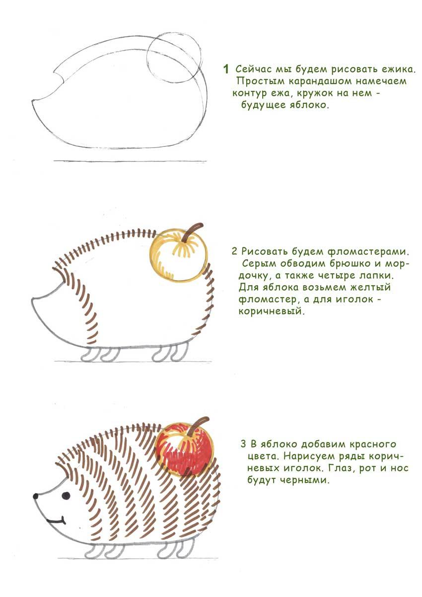 Как нарисовать ежей поэтапно