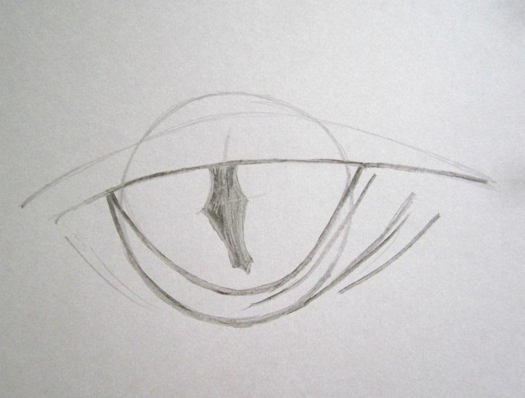 Учимся рисовать карандашом до 10 лет
