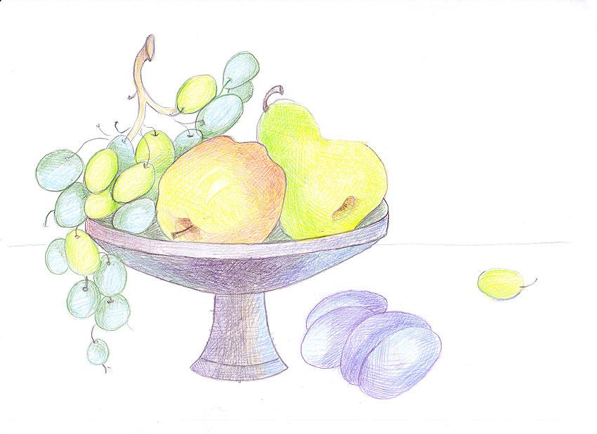 Натюрморт с фруктами карандашом для 1 класса