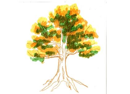 Рисунок дуба в сказках