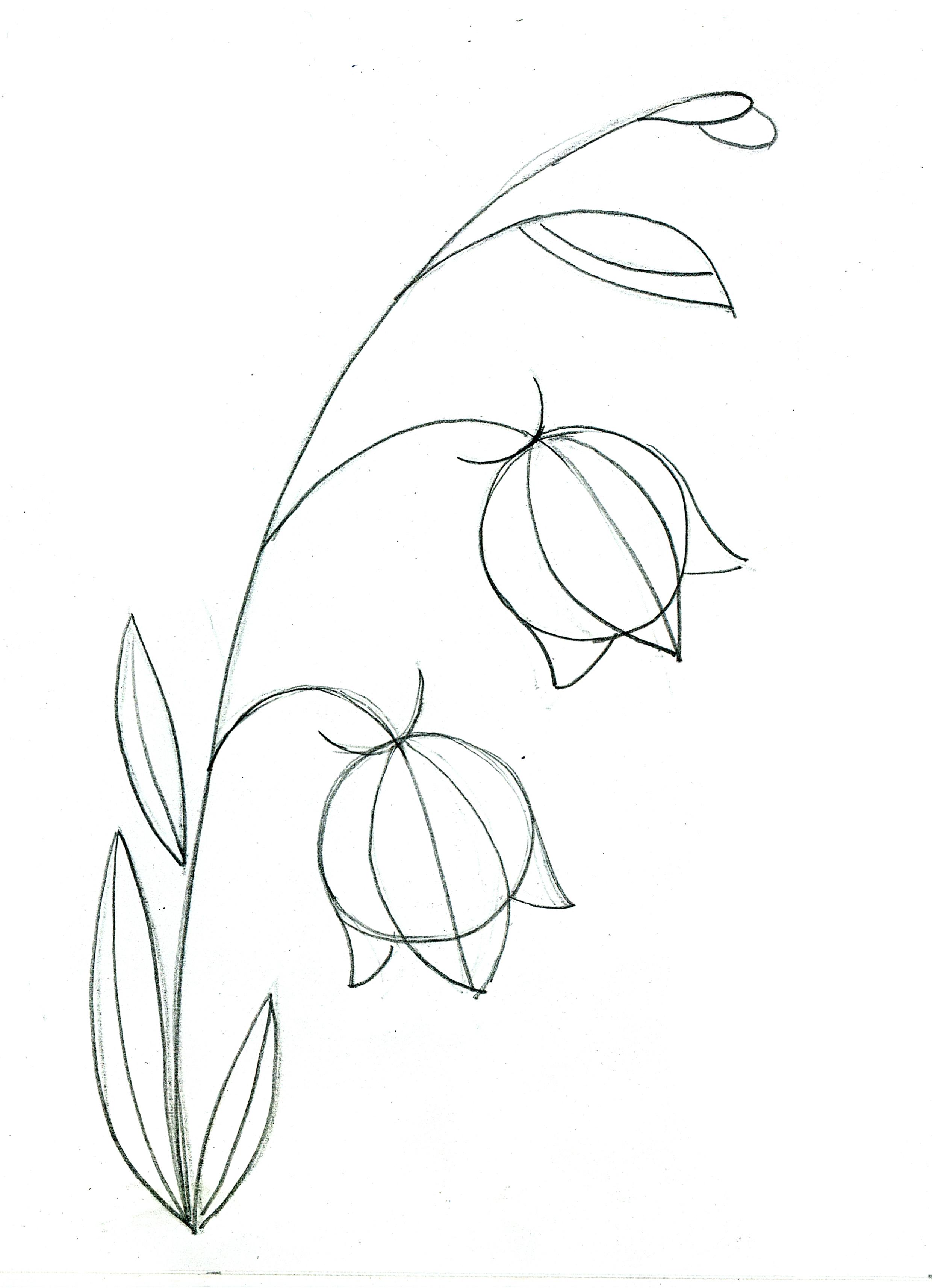 Рисунок «Цветок» 54