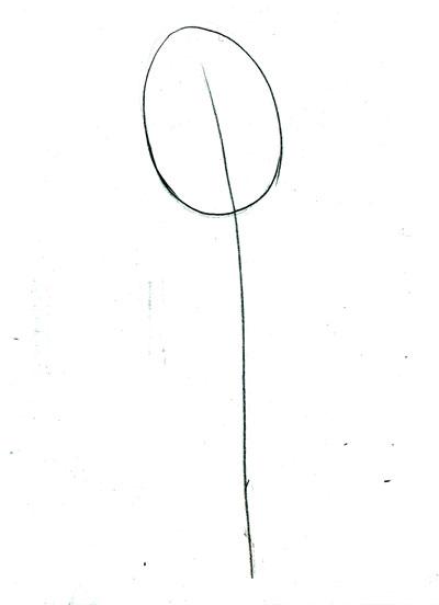 Рисуем цветок розы