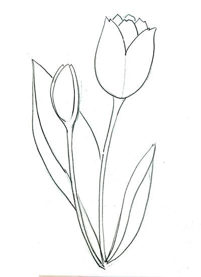Рисуем тюльпан поэтапно