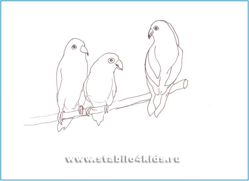 Легкие рисунки птиц