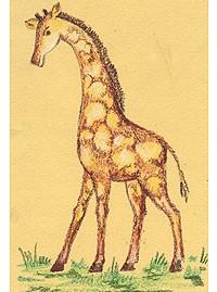 Рисуем масляной пастелью поэтапно для начинающих