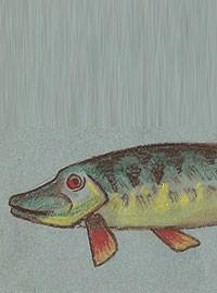Поэтапное рисование морских