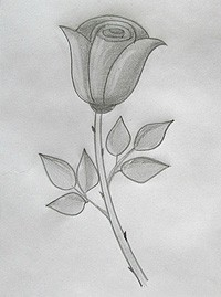 Картинки на тему природа поэтапно