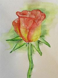 Картинки о природе карандашом для начинающих