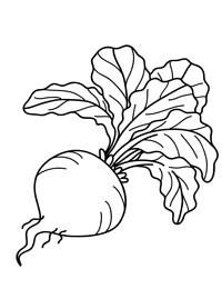 Раскраска Фрукты и Овощи для детей. Stabilo4kids.ru
