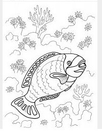 раскраска морская рыбка