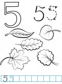Цифра 5 раскраска - 1